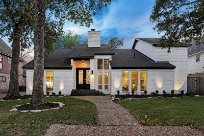 Houston Single Family Home For Sale: 1011 Daria Drive
