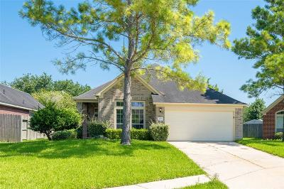 Manvel Single Family Home For Sale: 3127 Valley Court