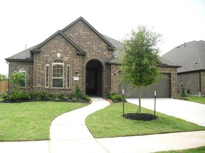 Sugar Land Single Family Home For Sale: 5815 Manning Hollow Lane