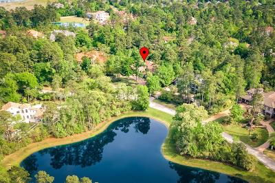 Conroe, Spring, The Woodlands Single Family Home For Sale: 15 Villeroy Way