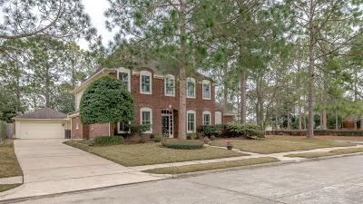 Houston Single Family Home For Sale: 2002 Aspen River Lane
