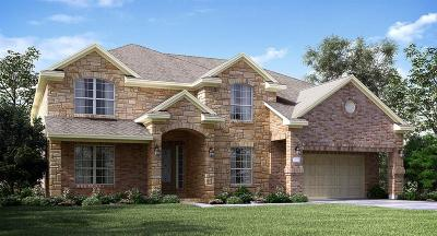 New Caney Single Family Home For Sale: 18848 Collins View Drive