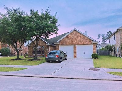 Tomball Single Family Home For Sale: 18115 Rustic Springs Drive