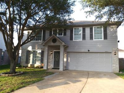 Katy Single Family Home For Sale: 21602 Misty Fall Lane