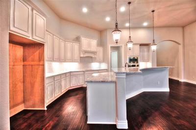 Katy Single Family Home For Sale: 29211 Wood Lily Drive