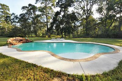 Willis Single Family Home For Sale: 13201 E Fm 1097 Road