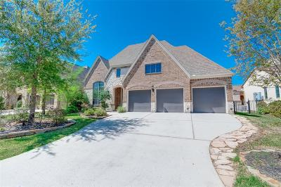 The Woodlands Single Family Home For Sale: 18 Crystal Canyon Place
