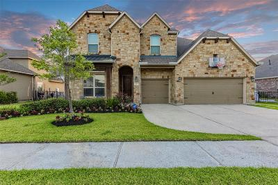 League City Single Family Home For Sale: 845 Signature Cove