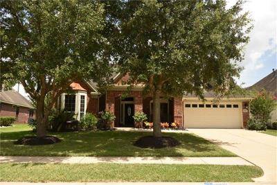 Pearland Single Family Home For Sale: 10001 Erin Glen Way