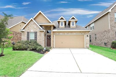 Spring Single Family Home For Sale: 21526 Rainfall Park Drive