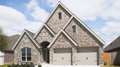 Pearland Single Family Home For Sale: 3117 Primrose Canyon Lane