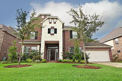 Friendswood Single Family Home For Sale: 4315 Staghorn Lane