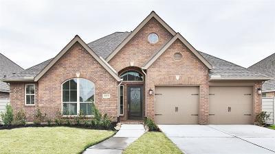 Manvel Single Family Home For Sale: 4537 Mesquite Terrace Drive
