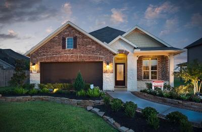Katy Single Family Home For Sale: 5202 Splendid Circle