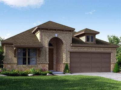 Fort Bend County Single Family Home For Sale: 20439 Alpine Meadow Place