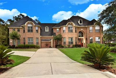 Conroe Single Family Home For Sale: 13253 Autumn Mist Lane