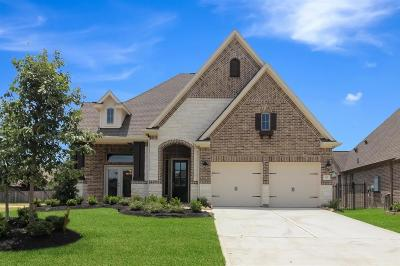 The Woodlands Single Family Home For Sale: 11 Peace Tree Way Way