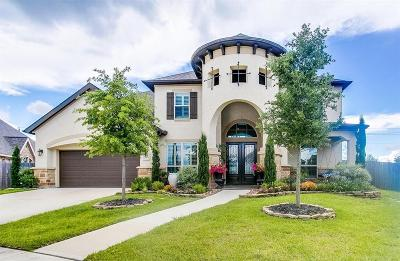 Friendswood Single Family Home For Sale: 2505 Cedar Path Court