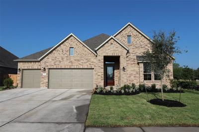 Katy Single Family Home For Sale: 5719 Chipstone Trail Lane