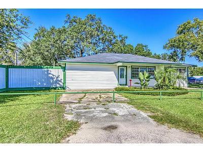 Brazoria County Single Family Home For Sale: 1176 Fm 517 Road