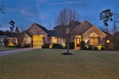 Conroe Single Family Home For Sale: 13221 Misty Sage Drive