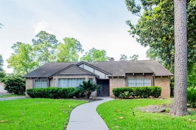 Houston Single Family Home For Sale: 2202 Riverlawn Drive