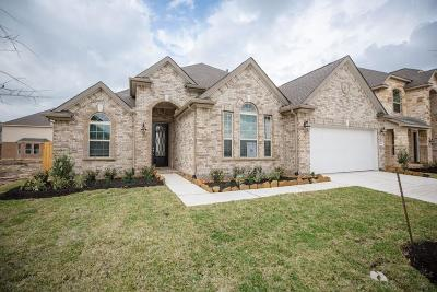 Rosenberg Single Family Home For Sale: 2014 Hampton Breeze Lane
