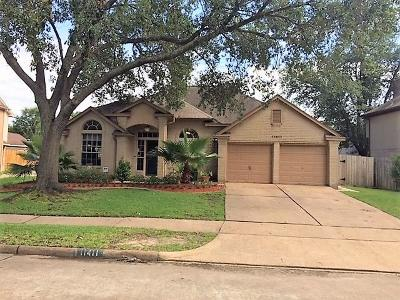 Houston Single Family Home For Sale: 11411 High Bridge Court