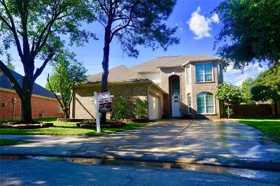 Houston Single Family Home For Sale: 17002 Feather Fall Lane