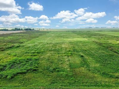 Wharton County Farm & Ranch For Sale: 00 County Road 328