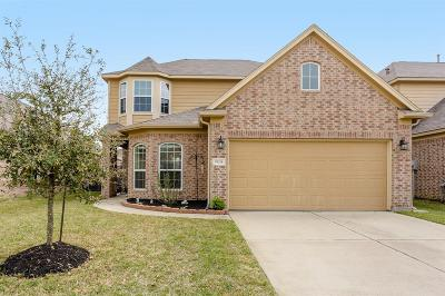 Tomball Single Family Home For Sale: 19214 Side Way