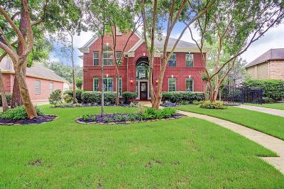 Houston Single Family Home For Sale: 934 Chisel Point Drive