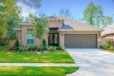 Montgomery Single Family Home For Sale: 111 Mistflower Path