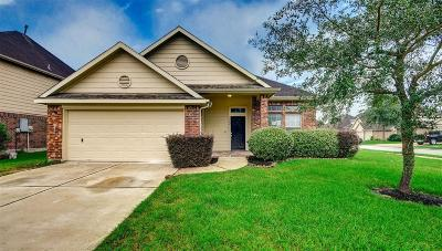 Pearland Single Family Home For Sale: 3702 Eaglet Trail