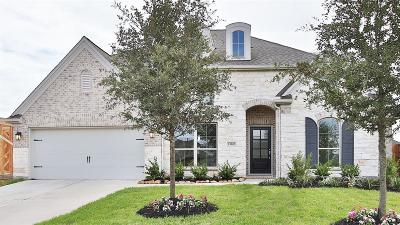 Pearland Single Family Home For Sale: 13620 Thunder Stone Lane