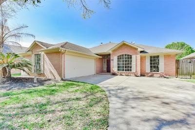 League City Single Family Home For Sale: 3118 Watercastle Court