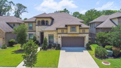 Sugar Land Single Family Home For Sale: 5519 Mangrove Creek Lane