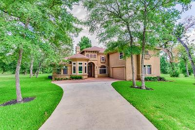 Willis Single Family Home For Sale: 1574 Ruby Drive