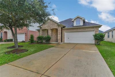 Pearland Single Family Home For Sale: 13308 Hickory Springs Lane