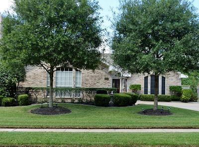 Harris County Single Family Home For Sale: 13514 Shadow Falls Court