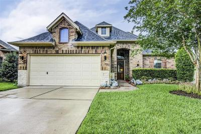 Friendswood Single Family Home For Sale: 3516 Firenze Drive