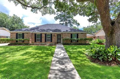 Houston Single Family Home For Sale: 2107 Stoney Brook Drive