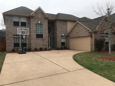 Pearland Single Family Home For Sale: 3403 Hickory Creek Drive