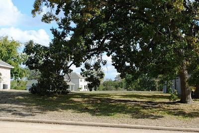 Montgomery Residential Lots & Land For Sale: 237 Blue Hill
