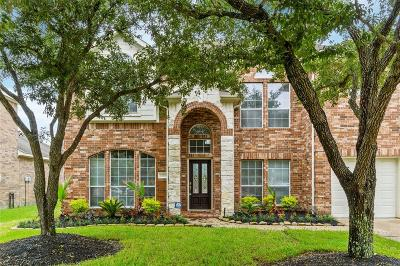 Houston Single Family Home For Sale: 10114 Red Mesa Drive