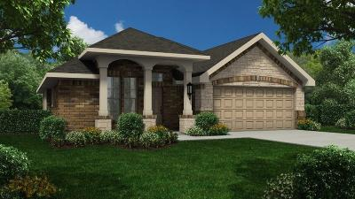 Alvin Single Family Home For Sale: 5169 Dry Hollow Lane