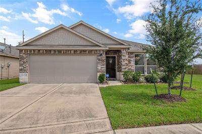 Katy Single Family Home For Sale: 5306 Nero Lake Drive