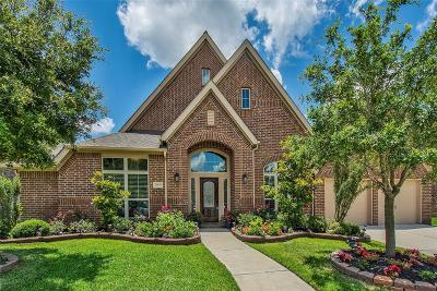 Pearland Single Family Home For Sale: 13904 Morgan Bay Drive