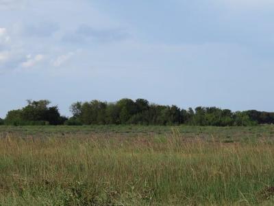 Wharton County Farm & Ranch For Sale: County Rd 373