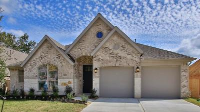 New Caney Single Family Home For Sale: 23638 Sage Villa Drive